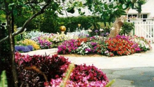להפוך כל גינה לגן עדן. עבודות ותיכנון גינות של אורי קראוזה