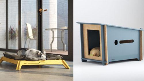 פששש רקסי, השתדרגת. מלונות ומיטות לחיות מחמד בעיצוב מקורי של RANCO