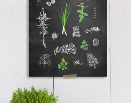 פוסטר למטבח - herbs and spices