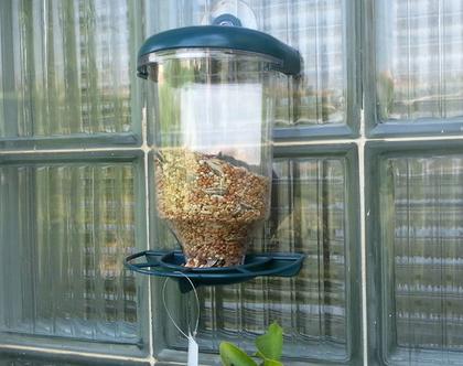 מתקן נצמד להאכלת ציפורי שיר