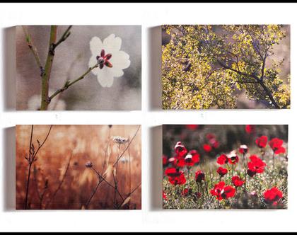 תמונות על עץ | רביעיית תמונות במחיר פרחוני | סדרת תמונות על עץ | תמונות לבית | תמונות לסלון | עיצוב הבית | תמונות על עץ