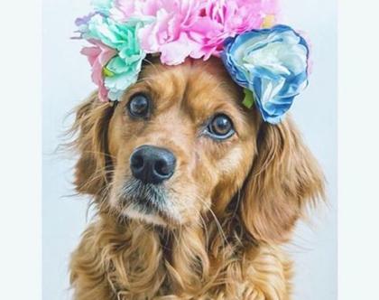 קשת פרחים לשיער | זר יום הולדת | פרחים פרידה קאלו | SOFI | KITSCH KITCHEN