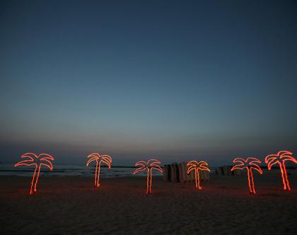 חוף הים, תל אביב 2009