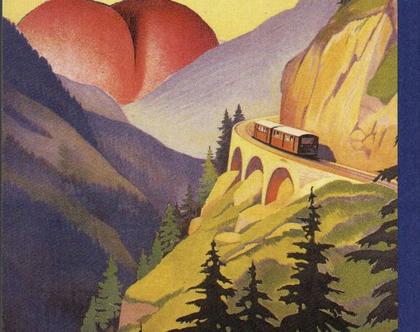 מסע לוולגריה, ספר חדש !