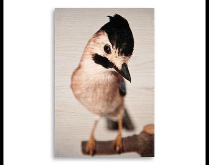 תמונה על עץ | 'עורבני' | ציפור על עץ | תמונה לבית | תמונה למשרד | הדפסה על עץ | תמונה לסלון | מתנה מקורית