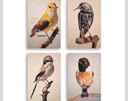 תמונות על עץ | רביעיית תמונות במחיר מקור | ציפורים על עץ | תמונות מקוריות | תמונות לבית | תמונות למשרד | תמונות לסלון | צילום על עץ |