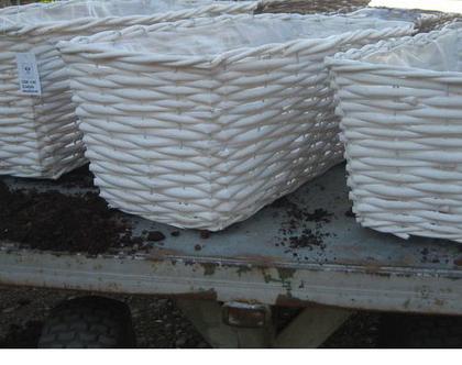 סל קש לבן L לשתילת צמחים עם ציפוי ניילון