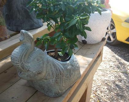 פיל חרס אדנית לעציץ