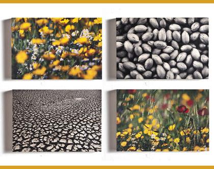 תמונות על עץ | רביעיית תמונות במחיר צהוב שחור | סדרת תמונות על עץ | תמונות לבית | תמונות לסלון | עיצוב הבית | תמונות על עץ |