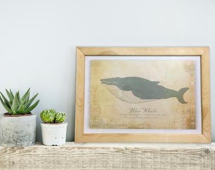 תמונת לויתן בסגנון וינטג׳ | תמונה מעוצבת לבית | תמונה במסגרת עץ