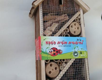 בית לחיפושיות פרת משה רבנו