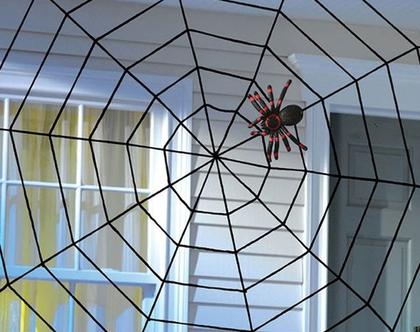 קורי עכביש גדולים   HELLOWEEN