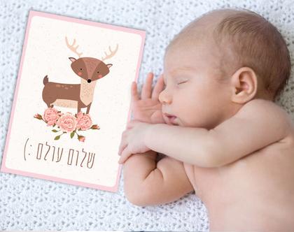 גלויות חודשים   גלויות חודשים לתיעוד התפתחות התינוק עד גיל שנה   גלויות לתיעוד השנה הראשונה   תיעוד השנה הראשונה   מארז גלויות   דגם בנות