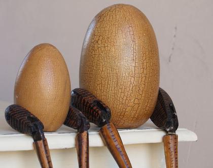 הביצה והתרנגול