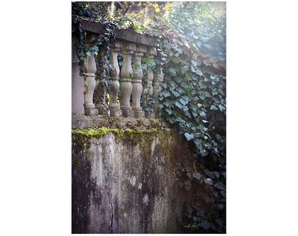 גלויה מצולמת. יער חורפי קסום. פרינט מקורי. צילומים מקוריים. חורף. כרטיס ברכה לחורף. הדפס מקורי. צילום יער קסום.