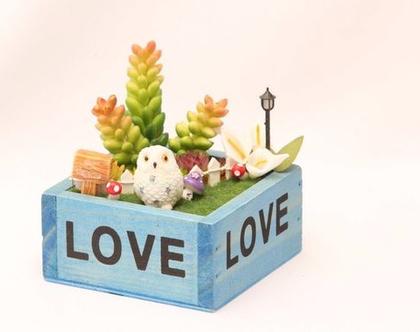 עציץ מעוצב- גינה מיניאטורית - love box - צמח מלאכותי
