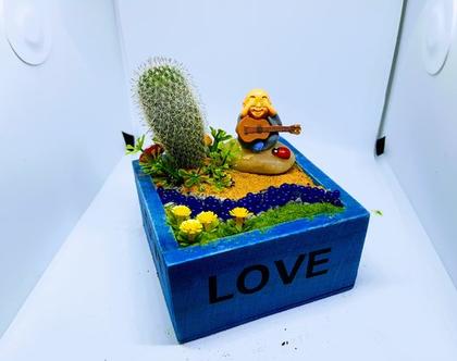 עציץ מעוצב- גינה מיניאטורית - love box 4
