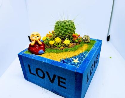 עציץ מעוצב- גינה מיניאטורית - love box 5