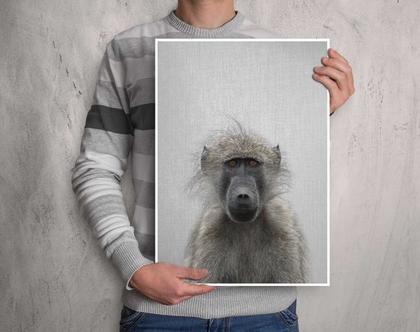 בבון | תמונות על קיר | עיצוב לחדר ילדים | תמונות לעיצוב הבית | תמונה לקיר | תמונות לתליה | תמונות למסגור | תמונות של חיות לבית | סט פוסטרים