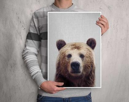 דוב | תמונות על קיר | עיצוב לחדר ילדים | בעלי חיים תמונות | תמונה לקיר | תמונות לתליה | תמונות למסגור | תמונות חמודות | סט פוסטרים