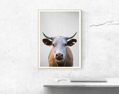פרה | תמונות על קיר | עיצוב לחדר ילדים | בעלי חיים תמונות | תמונה לקיר | מתנות ליום הולדת | תמונות למסגור | תמונות חמודות | עיצוב פנים