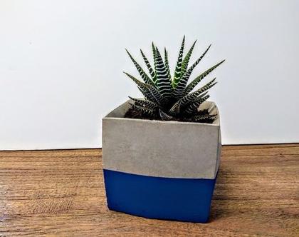 כלי לעציץ מרובע פס כחול | כלי לעציץ | כלי לסוקולנט | עציץ לסוקולנט | עציץ מבטון | עיצוב מבטון | אקססוריז לבית | אקססוריז לגינה