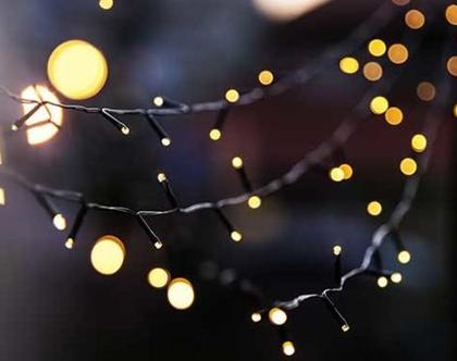 גרילנדה 100 נורות לד בלבן חם | שרשרת נורות לד | שרשרת לדים | מנורות סולאריות לגינה