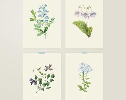 רביעיית הדפסי פרחים - 21*30