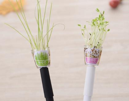 עט עם זרעי צמח | עט שחור | עט דיו שחור