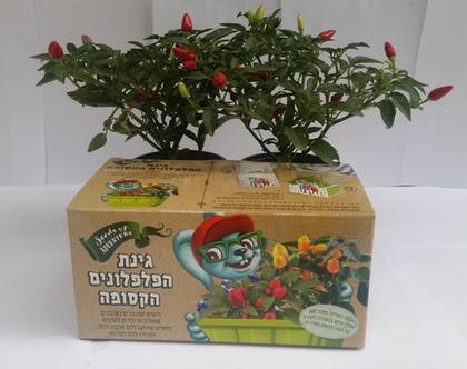 אדנית פלפלונים | אדנית צמחי תבלין | מתנה לחג | זרעים | גידול צמחי תבלין | מתנה לסוף שנה