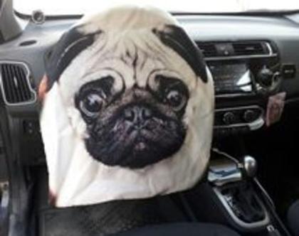 כיסוי להגה | כיסוי הגה לרכב | כיסוי נגד השמש | כיסוי בעיצוב אישי - דגם כלב פג