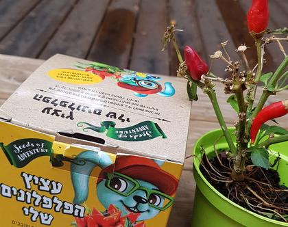 עציץ הפלפלונים שלי | מתנות לילדים | טו בשבט | ערכת שתילת זרעי פלפלונים | מתנות לסוף שנה