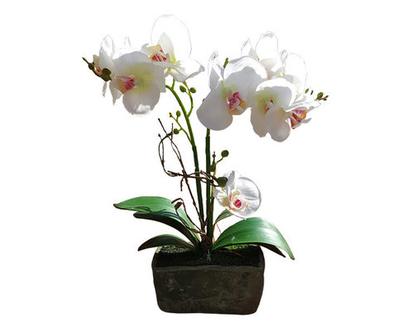 סחלב לבן, פרח משי, פרחי משי, פרח מלאכותי, סחלב, עיצוב לשולחן, מתנה לחג, סחלב לבן באדנית tks161