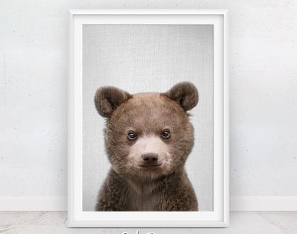 דוב | תמונות חמודות | עיצוב לחדר ילדים | בעלי חיים תמונות | תמונה לקיר | תמונות לתליה | תמונות למסגור | חדרי תינוקות | סט פוסטרים