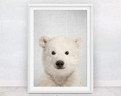 עיצוב חדרי ילדים | דוב קוטב | פוסטר לחדר ילדים | תמונות מודרניות לבית | חדרי תינוקות | תמונות לתליה | עיצבו סלונים | מתנה לילד | סט פוסטרים