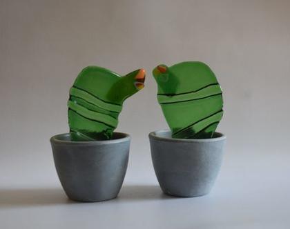 זוג קקטוסים מקוריים מתנה מקורית למשרד קקטוס מעוצב אישי