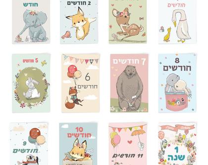 גלויות חודשים לתיעוד התינוק/ת דגם חיות | תיעוד השנה הראשונה | תיעוד החודשים של התינוק | כרטיסיות חודשים | תיעוד התינוק | גלויות התפתחות