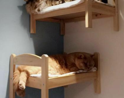 מיטה לחתולים מעץ מלא לתלייה על קיר