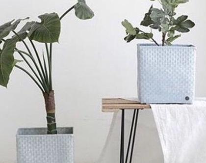 סל מרובע לצמחים
