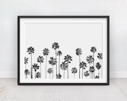 תמונה של עצי דקל | פוסטרים צמחים | שחור לבן | תמונות מינימליסטיות | תמונה על הקיר | פוסטר טרופי | תמונה לסלון | תמונות עצים | הדפס מודרני
