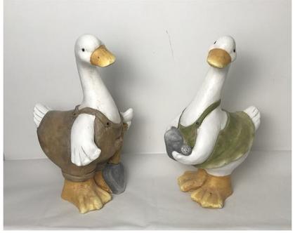 סט שני ברווזים