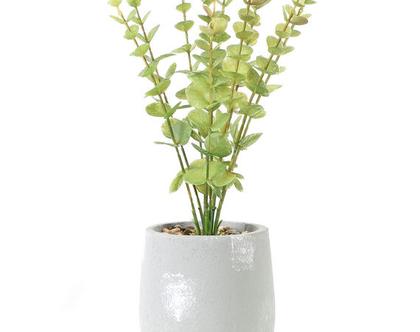 צמח ירוק בעציץ אפור 02