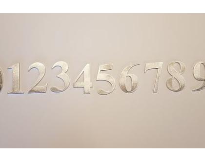 ספרות לדלת כניסה לציון מספר הדירה  מספר כניסה לבית   המחיר הינו לספרה