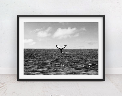 זנב לוויתן | תמונות של חיות | שחור לבן | תמונות ים | תמונה מודרנית | פוסטר מעוצב | לויתן | תמונות למסגור | הדפס איכותי | תמונה לחדר ילדים
