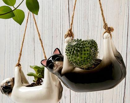 עציץ תלוי קרמי קטן דמוי חתול