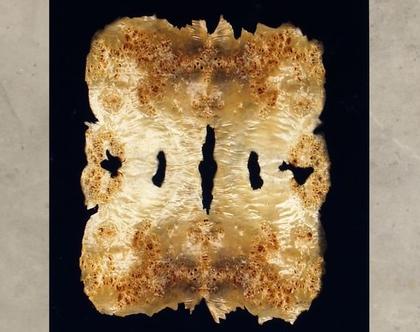 המפץ הגדול - תמונת עץ מופשטת