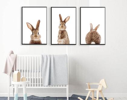 סט הדפסים ארנבות | תמונות לחדר ילדים | תמונה של ארנב| תמונה של ארנבת| פוסטרים לחדר ילדים
