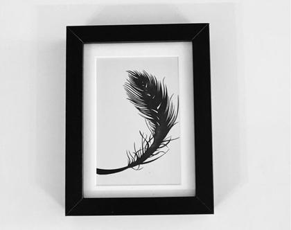 תמונה ממוסגרת של הדפס איכותי של נוצה | תמונה יפיפיה | תמונה מינימליסטית