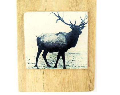 אייל אופטימי על עץ ממוחזר  תמונה לסלון  מתנה  חדר ילדים  עיצוב הבית 