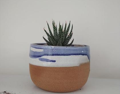 כלי יפה לצמח